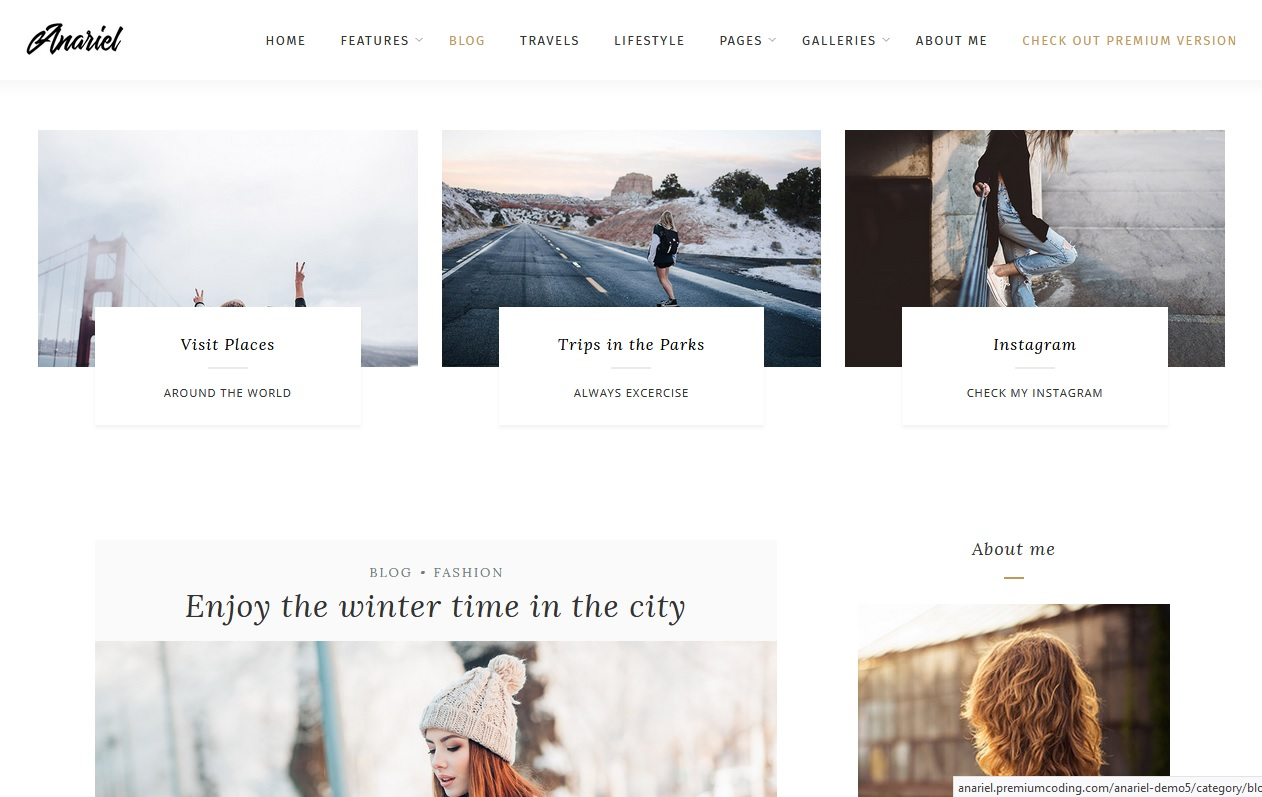 anariel-free-themes-wp-wordpress-themes
